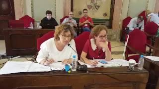 Pleno mayo 2017- Micol se lo deja claro a Navarro Corchón