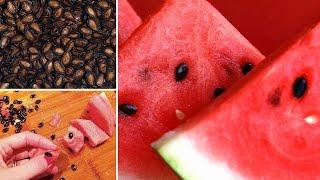 Health Benefits Watermelon Seeds