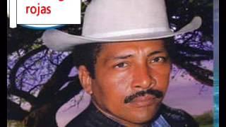 El jardinero del coronel santiago rojas