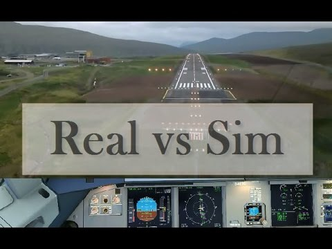 life simulation