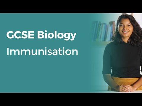 immunisation-|-9-1-gcse-biology-|-ocr,-aqa,-edexcel