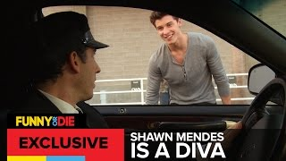Shawn Mendes Is A Diva