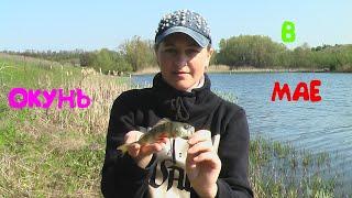 КАК Я ЛОВЛЮ ОКУНЯ НА УЛЬТРАЛАЙТ КОГДА СОВСЕМ НЕ КЛЮЕТ Рыбалка на спиннинг 2020