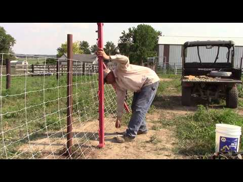 tips-and-tricks-episode-2:-woven-wire-fence-gut-strain