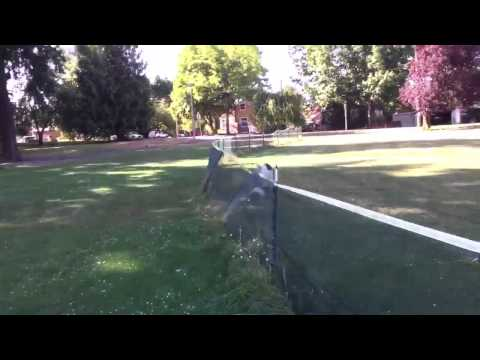 Dog runs into net and does a front flip