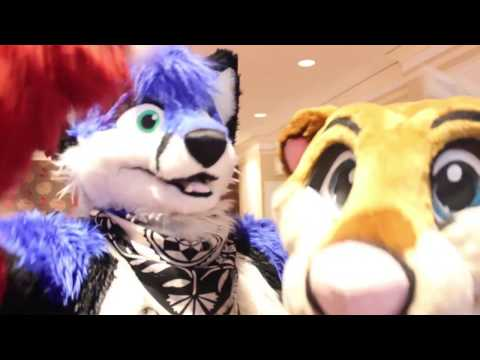 Come Running TFF 2017