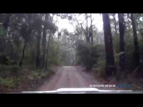 Freshwater Road, Cooloola Recreational Area part 2
