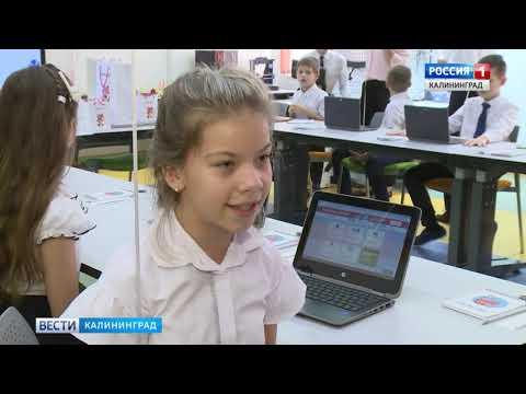 В Калининградской области стартовала олимпиада по программированию