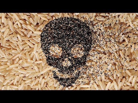 Dont Eat This: The Brown Rice Myth