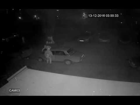 Банда автоворов во главе с котом, стоящим на шухере, орудует в Таганроге 1