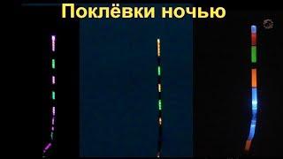 Поклевки ночью на поплавок- светлячок, подводная съемка. Поплавочная удочка. Рыбалка. Fishing