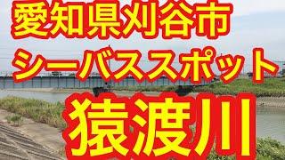 猿渡川 愛知県刈谷市シーバスフィッシングスポット