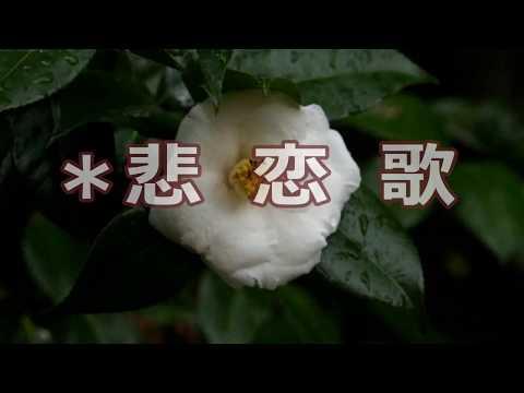 悲恋歌(パート2)/倉橋ルイ子 ♪柴田良子