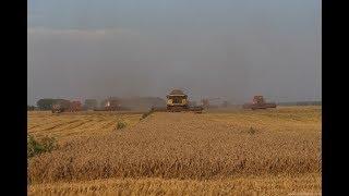 Moisson 2018 en Ukraine ! XXL Harvest | 45m de coupe | TOB Les Champs Élysées