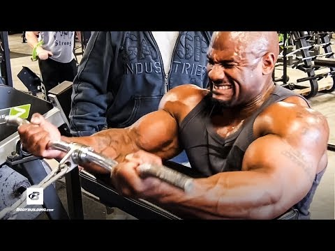 The 4 Quarters Arm Workout | IFBB Pro Jay Warren & Josh Bryant MS from YouTube · Duration:  12 minutes 27 seconds