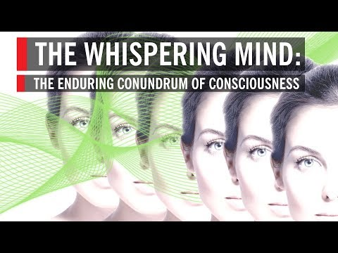 The Whispering Mind: The Enduring Conundrum of Consciousness