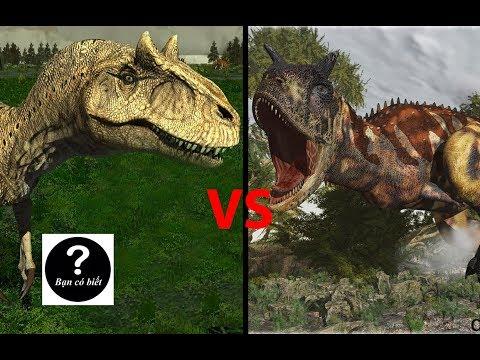 Allosaurus vs Carnotaurus, con nào sẽ thắng?    Bạn Có Biết?