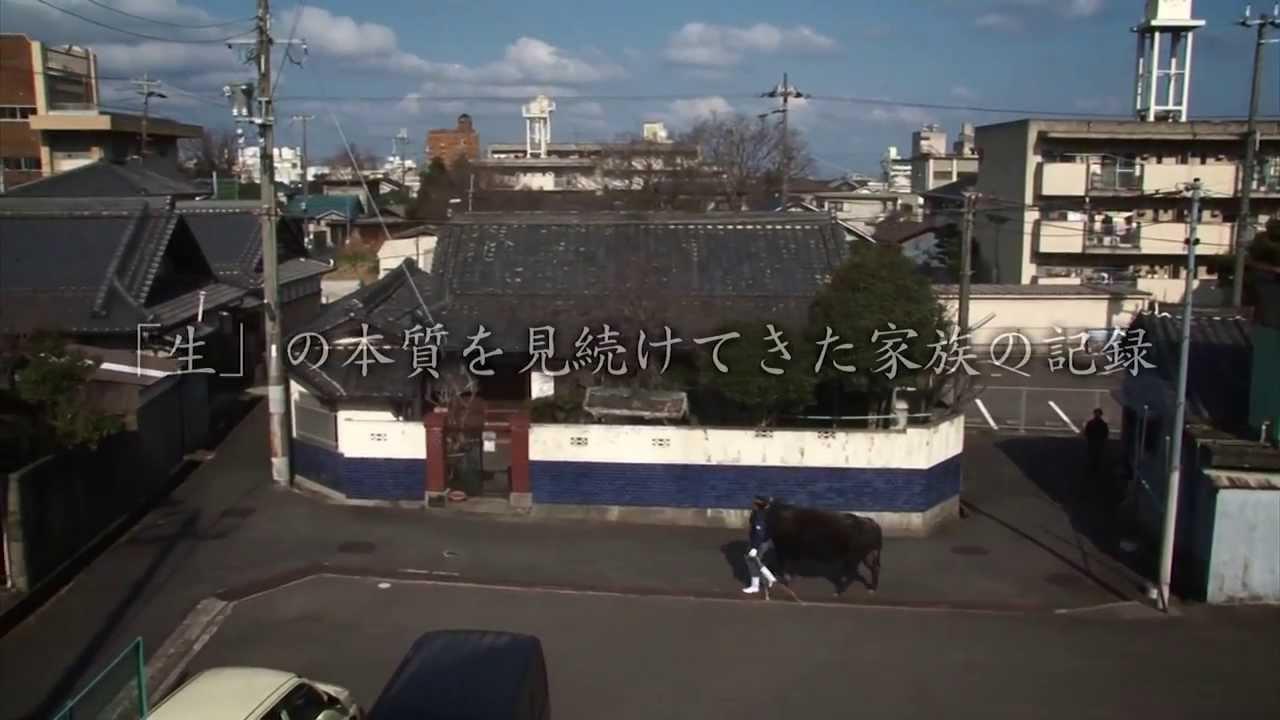 地区 同和 奈良 県