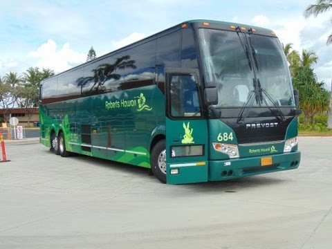 Roberts Hawaii Deluxe Grand Circle Island Tours