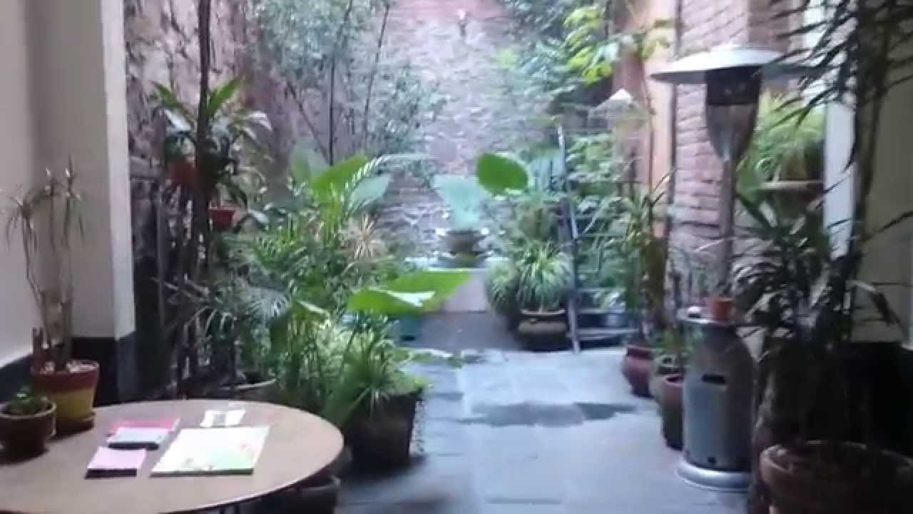 El Patio 77 Bed And Breakfast/ Hotel Boutique In Mexico City   YouTube
