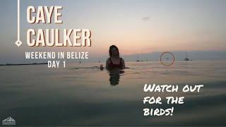 Explore Caye Caulker, Belize For A Weekend   Day 1 of 2   Nomadic Weekenders Travel Vlog