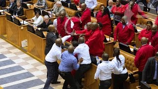 Brawl breaks out in South African parliament