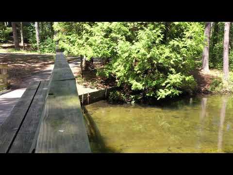 Crystal River Bridge - The Leelanau School