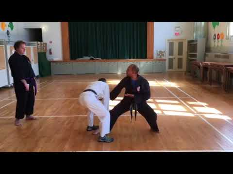 Shaolin Kempo: Working some concepts