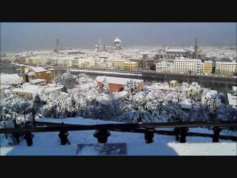 Neve a Firenze - 17/18 Dicembre 2010 - Marion d'Amburgo legge Sorelle Materassi - YouTube