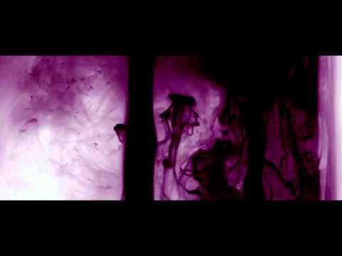 SUPPLIER Music Video