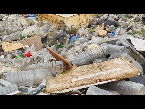 Plastik ≠ Plastik » HYPERRAUM.TV » SciLogs - Wissenschaftsblogs