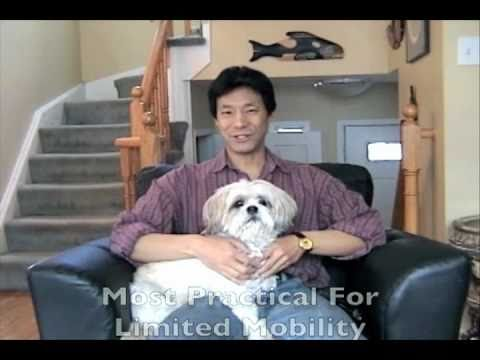 Puppy Potty Training Dogs Indoors With Dog Litter Box
