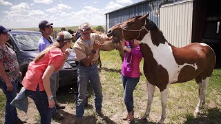 Treating Horses on Native American Reservations