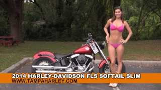 2014 Harley Davidson Softail Slim  - New Motorcycles for sale