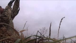 АРКАЛЫК  11 10 2013 Охота на гуся