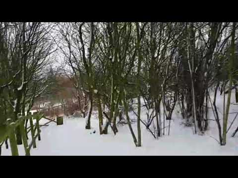 Ackers Adventure park Birmingham in snow