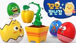 꼬모 | 씨앗 키우기 놀이 | 사고력 | 의사소통 | …