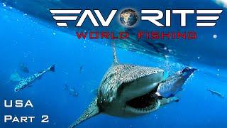 АКУЛЫ НЕ ДАЮТ РЫБАЧИТЬ Ловля тунца с лодки в США День 2 Favorite World Fishing