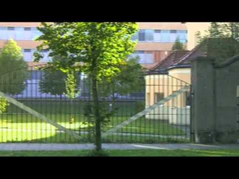 Anthony Newley - Pure Imagination