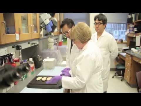 University of Pennsylvania Alzheimer's Disease Core Center Virtual Tour