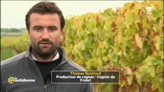 Cognac/ Armagnac: les frères ennemis - La Quotidienne