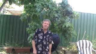 Phil's Gardening Tips And Tricks Wicking Air Pruning Pot