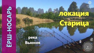 Русская рыбалка 4 - река Вьюнок - Ёрш-носарь за камышом