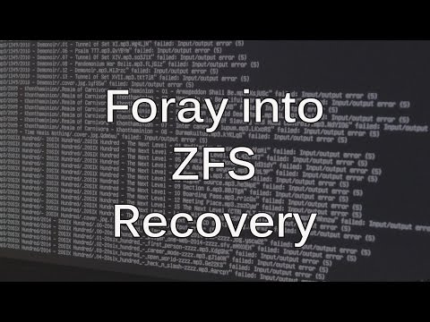 Adventure in ZFS Data Recovery