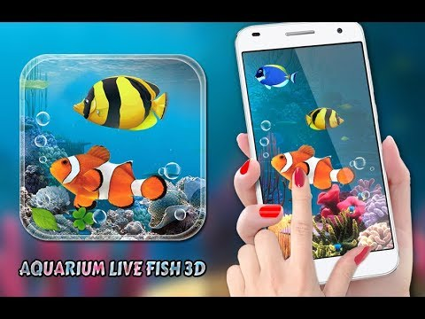 Aquarium Fish Live Wallpaper 2019: Koi Fish Free