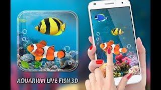 Aquarium Fish Live Wallpaper 2019: Koi Fish Free