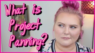 What is Project Panning and the Project Pan Community?   Lauren Mae Beauty