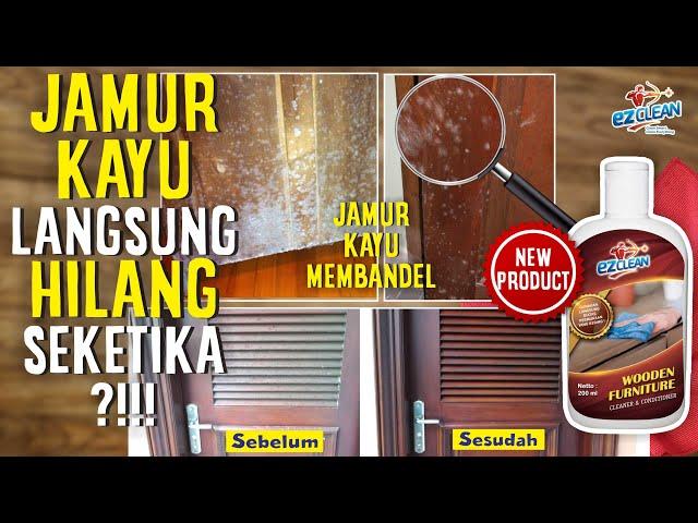 JAMUR KAYU LANGSUNG KABUR DENGAN EZCLEAN WOODEN FURNITURE CLEANER & CONDITIONER PEMBERSIH KAYU