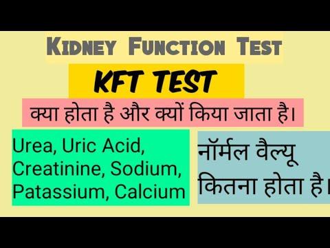 Kidney function test (KFT)