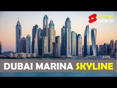 Dubai Marina Skyline. Ain Dubai #Shorts